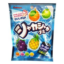 Bonbon shaka shaka gumi 51g