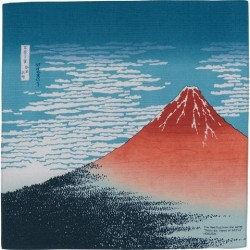 copy of Ukiyo-e Province de...